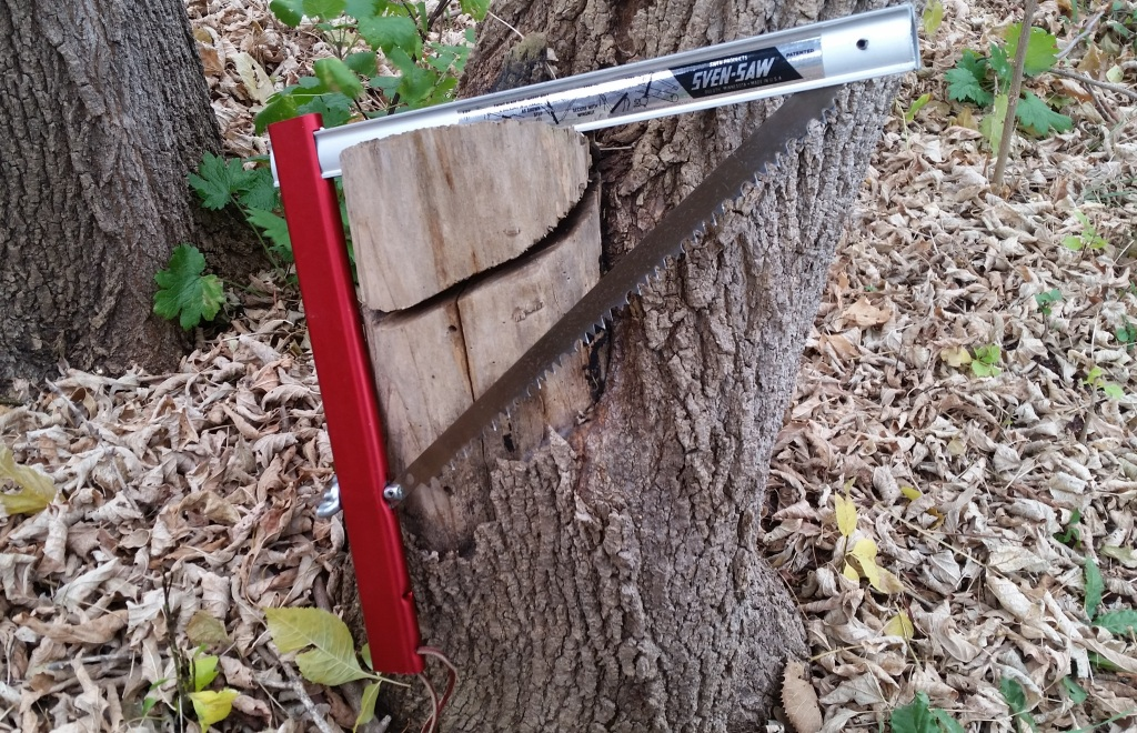 Sven Folding Saw on old tree cut.