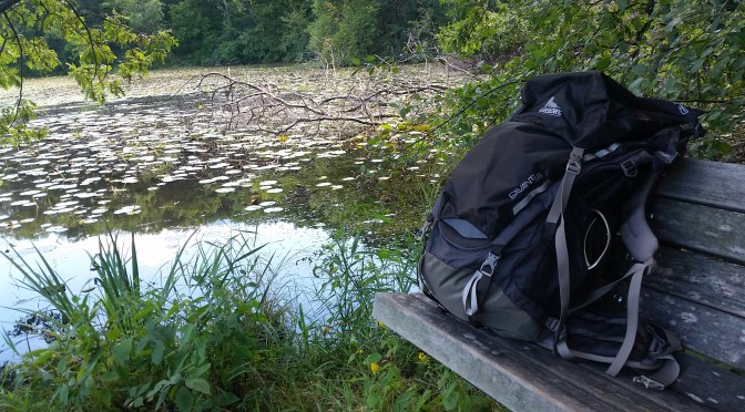 The Gregory Savant Backpack Review